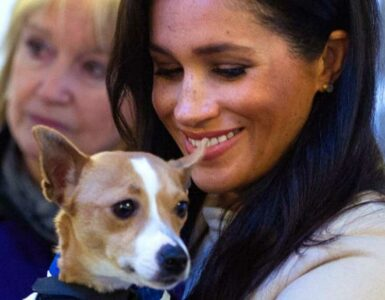 meghan with puppy at Mayhew event